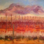 """Arizona Vineyard""Oil 16""X20, Available"