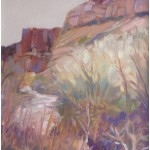 """Canyon deChelly Spring""  Oil 11"" X 14""  SOLD"