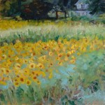 """Sunflowers and Corn""Oil 16""X16""SOLD"