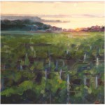 """Vineyard Sunset II""Oil 16""X16"" SOLD"